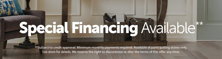 special financing available, subject to credit approval. see store for details.